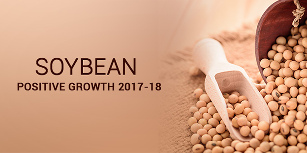 soyabean-positive-growth