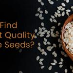 sesame-seeds-exporters