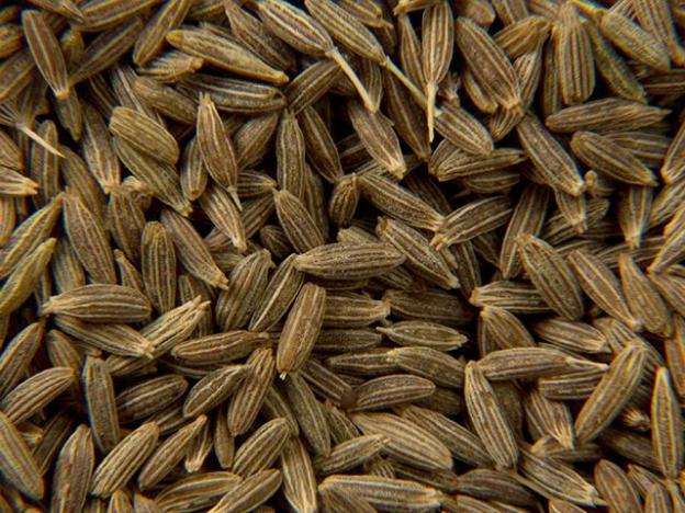 seeds-cumin