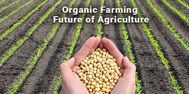 Organic-Farming-Future-of-Agriculture