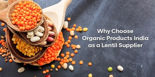 Why Choose Organic Products India As A Lentil Supplier