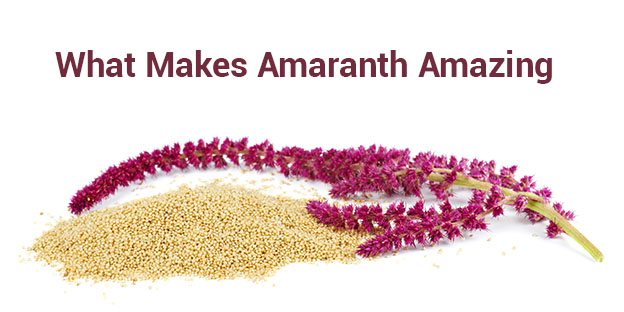 Organic amaranth manufacturer in India - Organic Products India