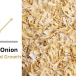 Dehydrated Onion Market Trend and Growth