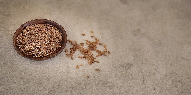 Linseed Supplier | Organic Product Of India